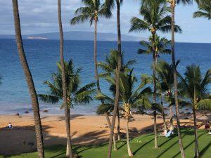 Lanai View Maui Beach Condo #411